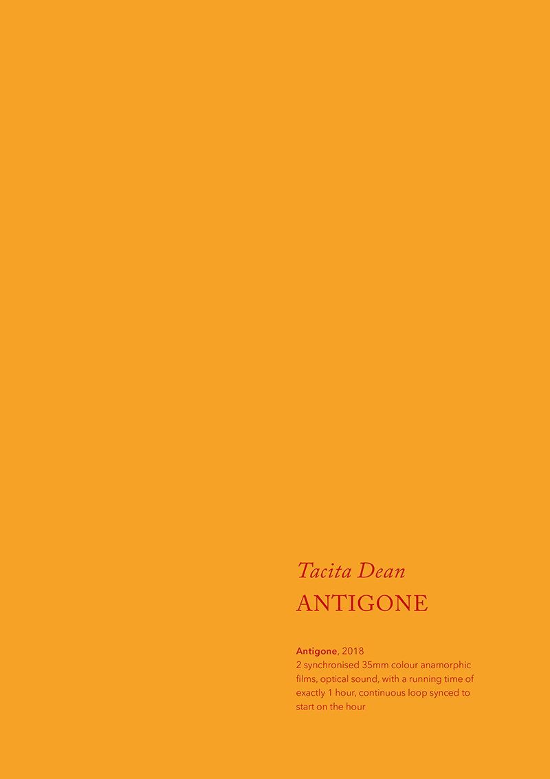Tacita Dean, Antigone